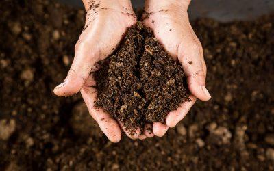 Zoom into Soil: Soil Organic Matter
