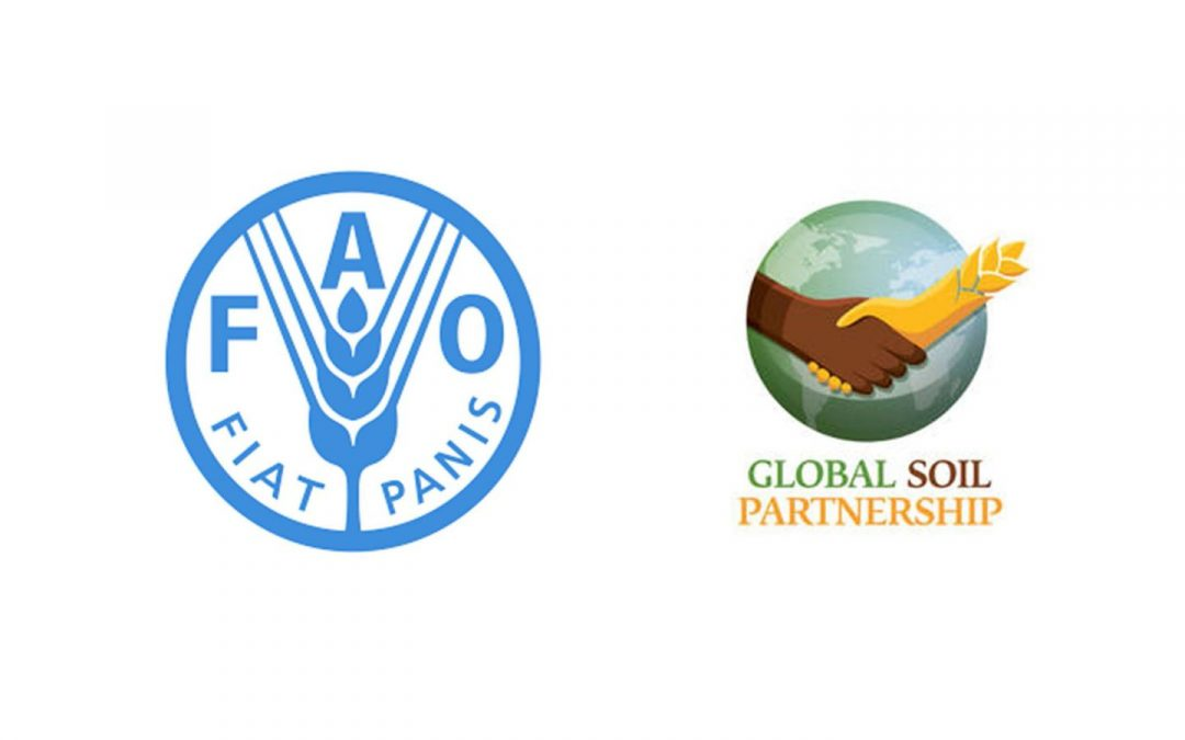 Update from Global Soil Partnership