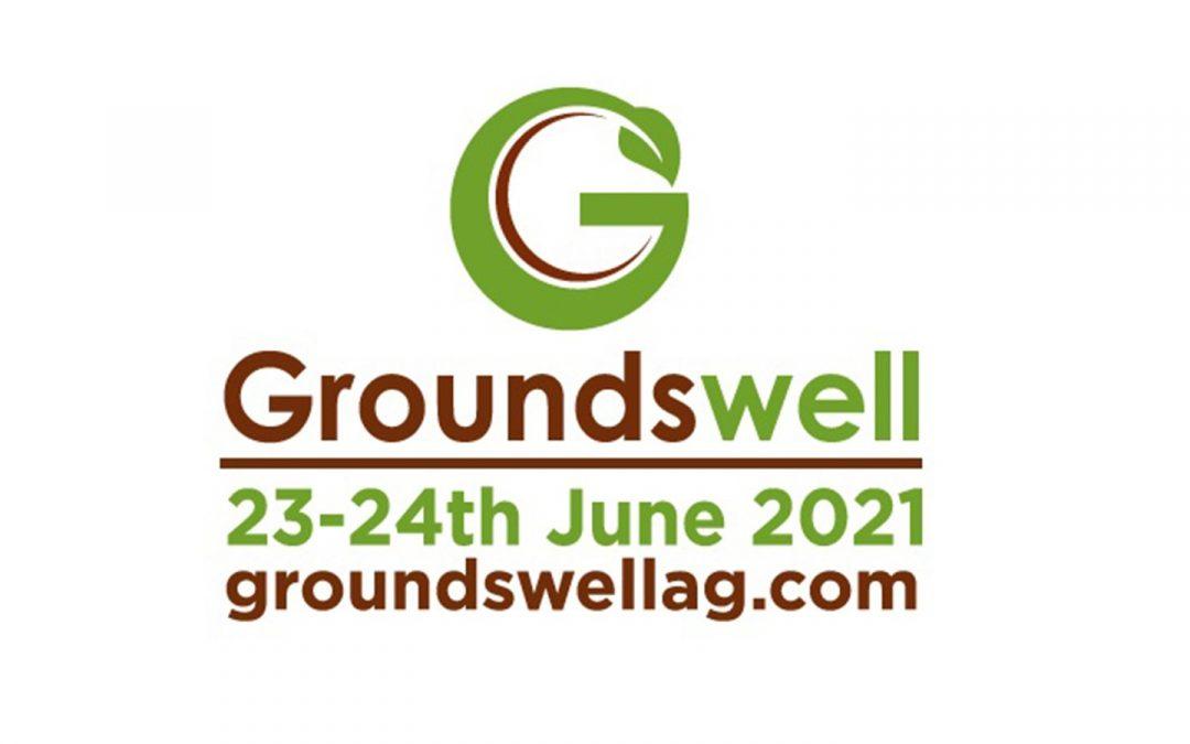 Groundswell 2021